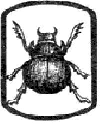 2824_tatu18.jpg (11.87 Kb)