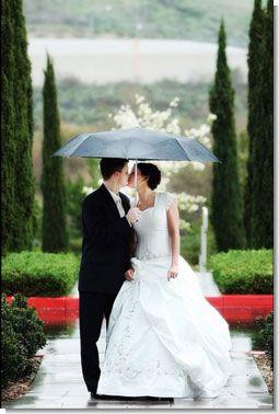 3588_surprise_wedding_1.jpg (21.6 Kb)